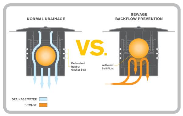 Sentinel Drain Guard Graphic