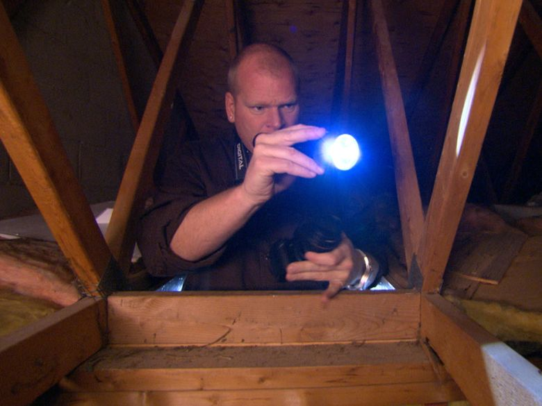 Mike Holmes Attic Rodents