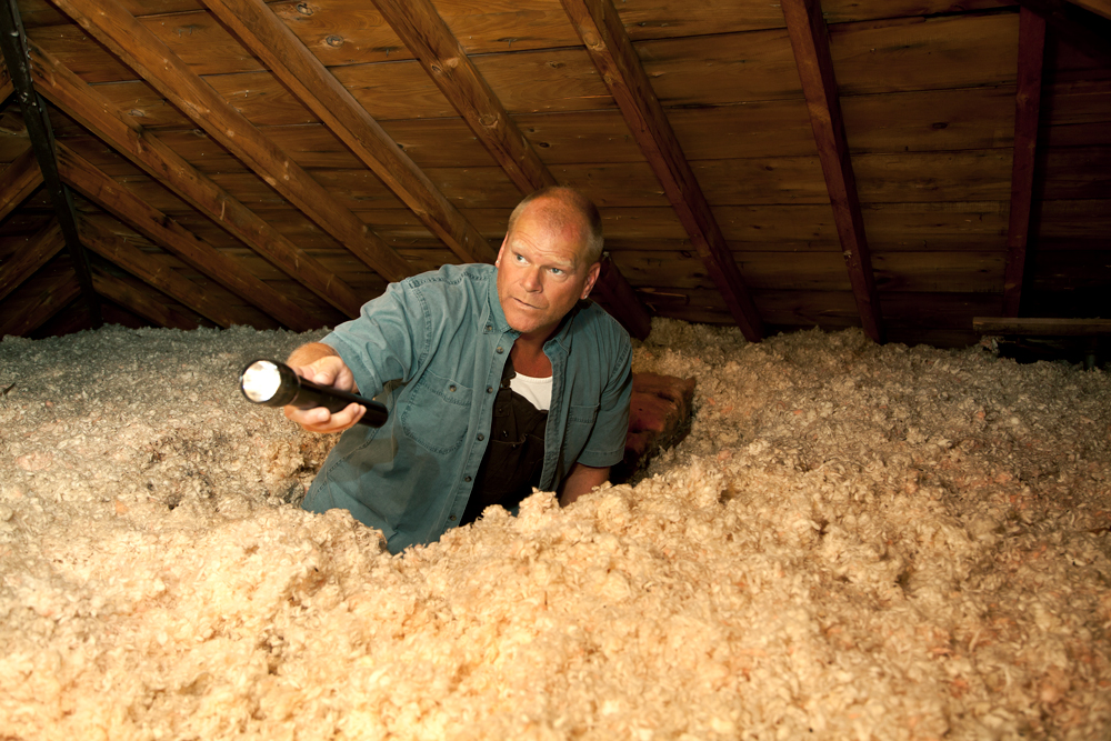 Mike Holmes Attic